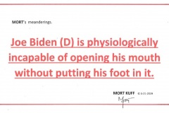 Joe Biden - Foot in Mouth