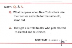 NY VOTERS AND NADLER