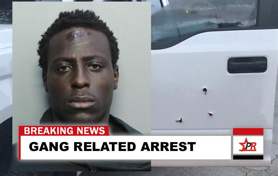 Gang Investigation