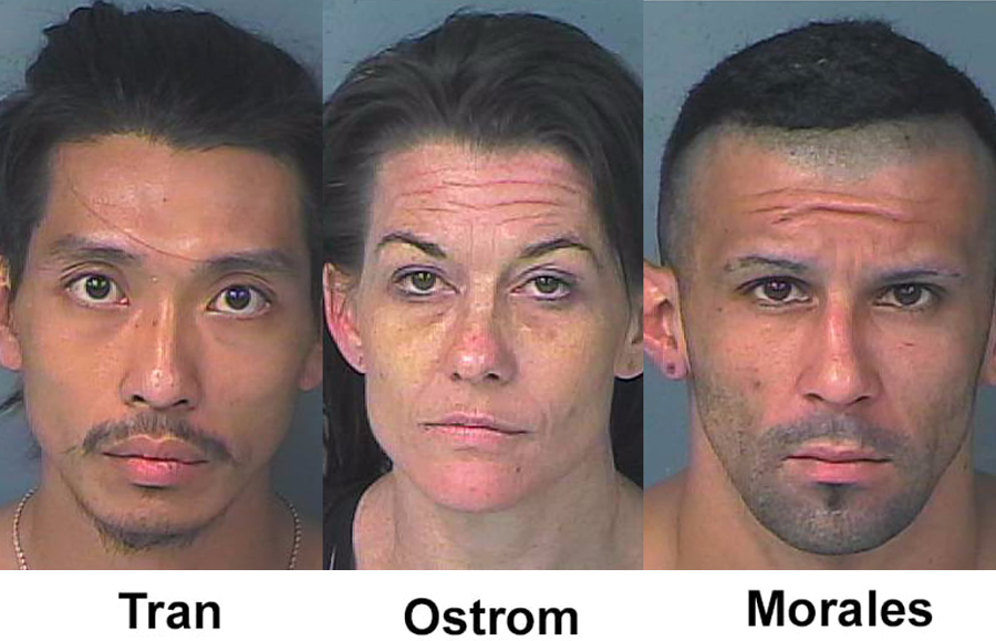 HCSO Narcotics Search Warrant nets Three Arrests in Spring Hill