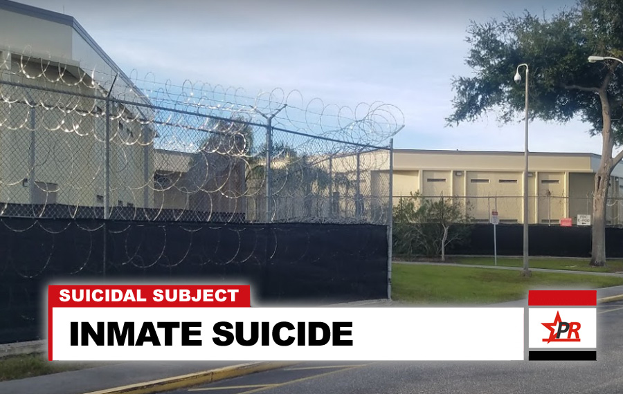 INMATE SUICIDE