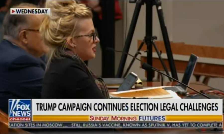 A witness testifying in Michigan on Wednesday.