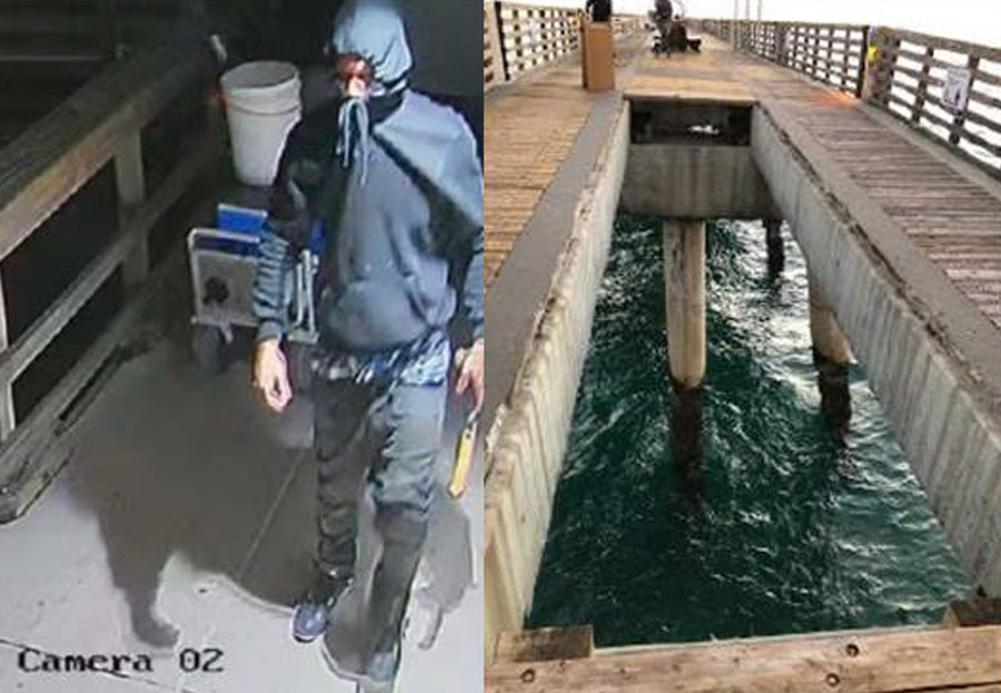A short time later, after the pier was opened, local anglers discovered numerous planks of wood along the pier walkway removed and floating in the ocean. The suspect was described as a white male, thin build, dark hair w a bun, and a goatee.