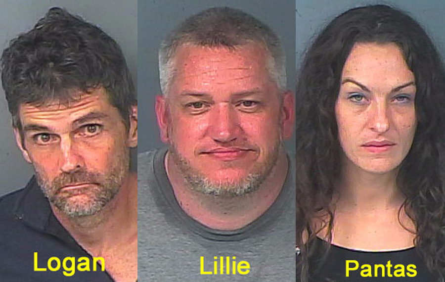 Adam Logan 46, Tara Pantas, 35, and Christopher Lillie, 39, were each charged with Grand Theft - More than $20,000, but less than $100,000. Additionally, Logan was charged with Possession of Fentanyl. All three were transported to the Hernando County Detention Center where Lillie and Pantas are being held in lieu of a $5,000 each. Logan is being held on a $7,000 bond.