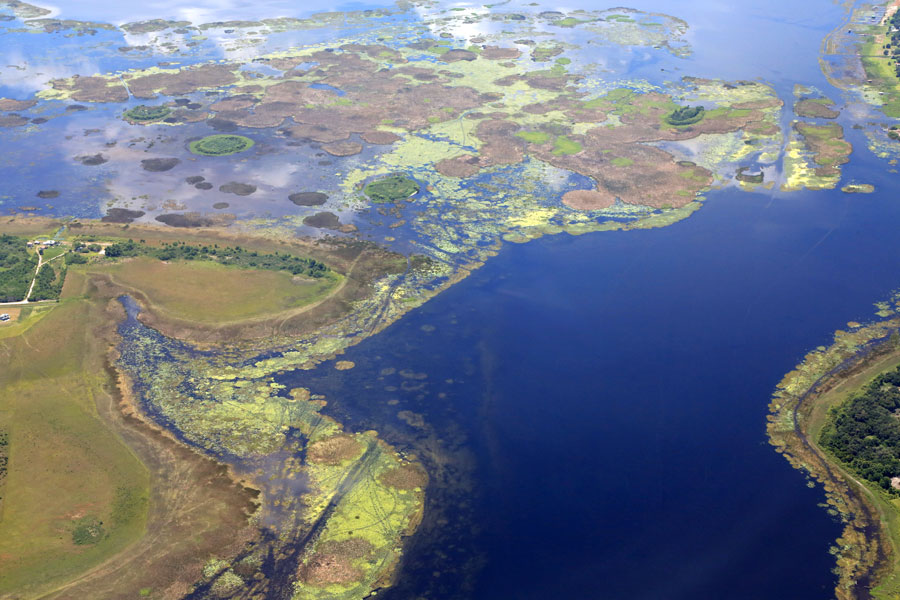 Aerial view of an algae bloom in Lake Okeechobee in Florida, a source of pollution to the water system and to the Everglades. Photo credit ShutterStock.com, licensed.