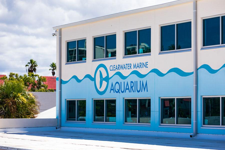 Clearwater Marine Aquarium in Clearwater, Florida. Florida's Marine Life Rescue Center. Clearwater, FL. August 24. 2019.