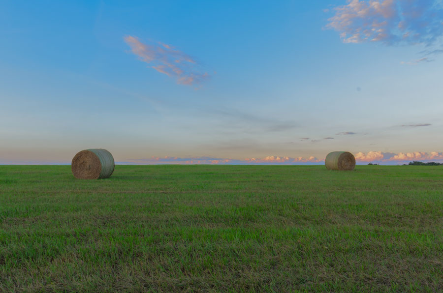 Hay stacks in Auburndale, Florida