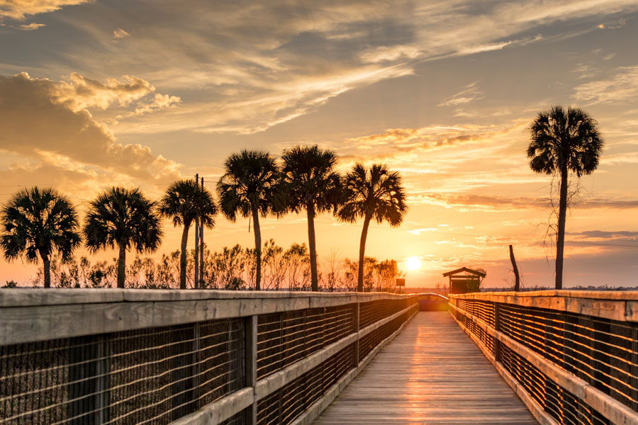 A Boardwalk in Paynes Prairie which brings you out a couple hundred feet over the water. Gainesville Florida. Photo credit ShutterStock.com, licensed.