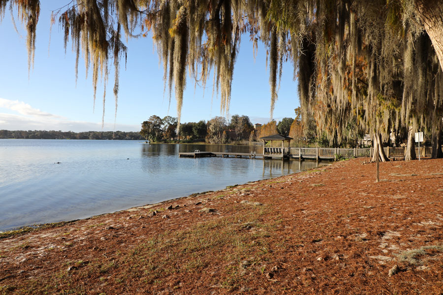 Spanish moss hanging from ancient trees, in Winter Park, Florida along the shore of Lake Virginia, near the Rollins College campus, north of Orlando. Photo credit ShutterStock.com, licensed.
