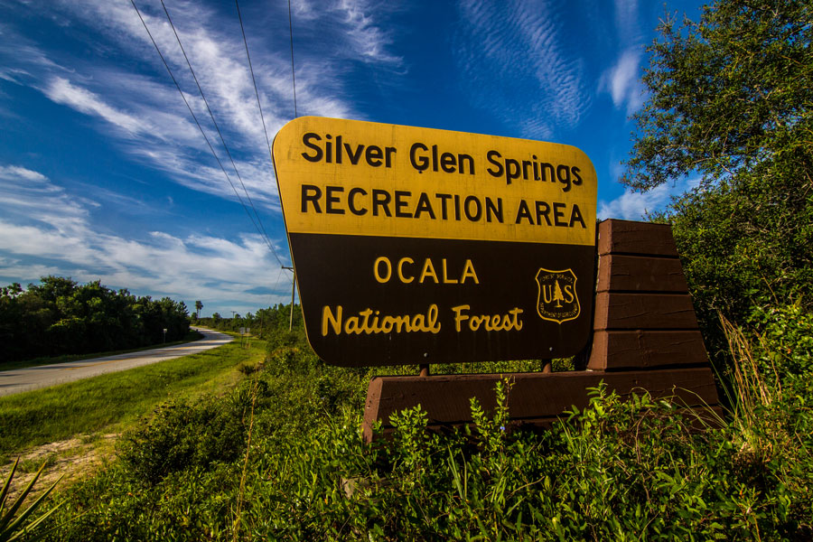 Ocala Silver Glen Springs Sign at the Ocala National Forest. Photo credit ShutterStock.com, licensed.