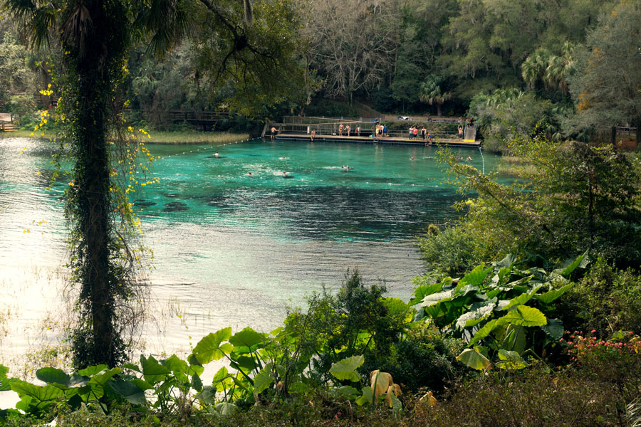 People swimming in the beautiful blue-green waters of Dunnellon's Rainbow Springs State Park.