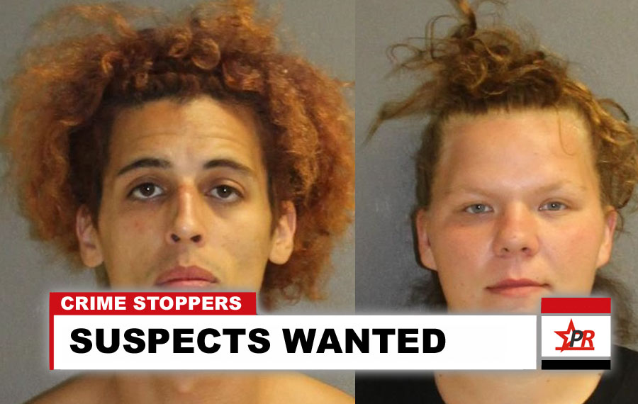 SUSPECTS WANTED