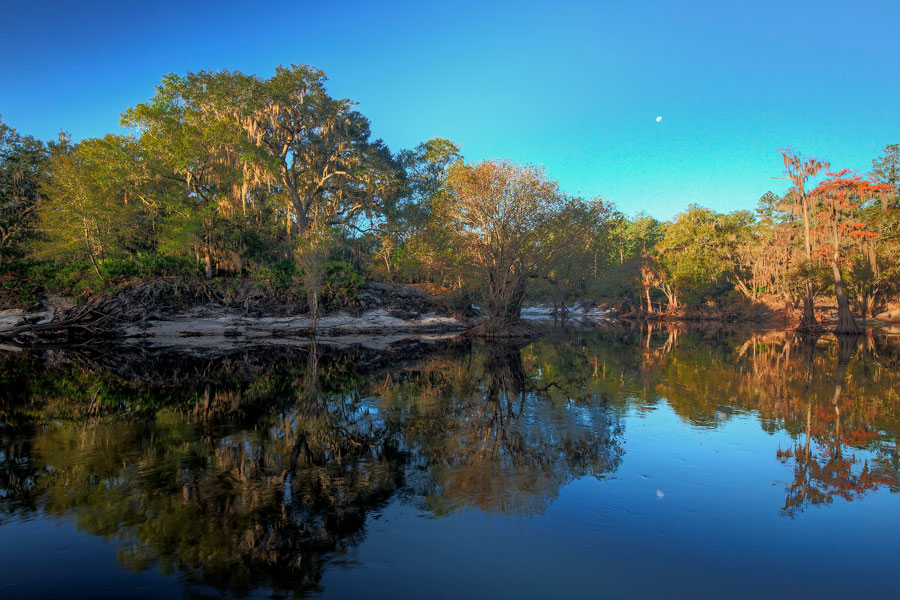 A moonset over the Suwannee River in north Florida's Fanning Springs. Photo credit ShutterStock.com, licensed.