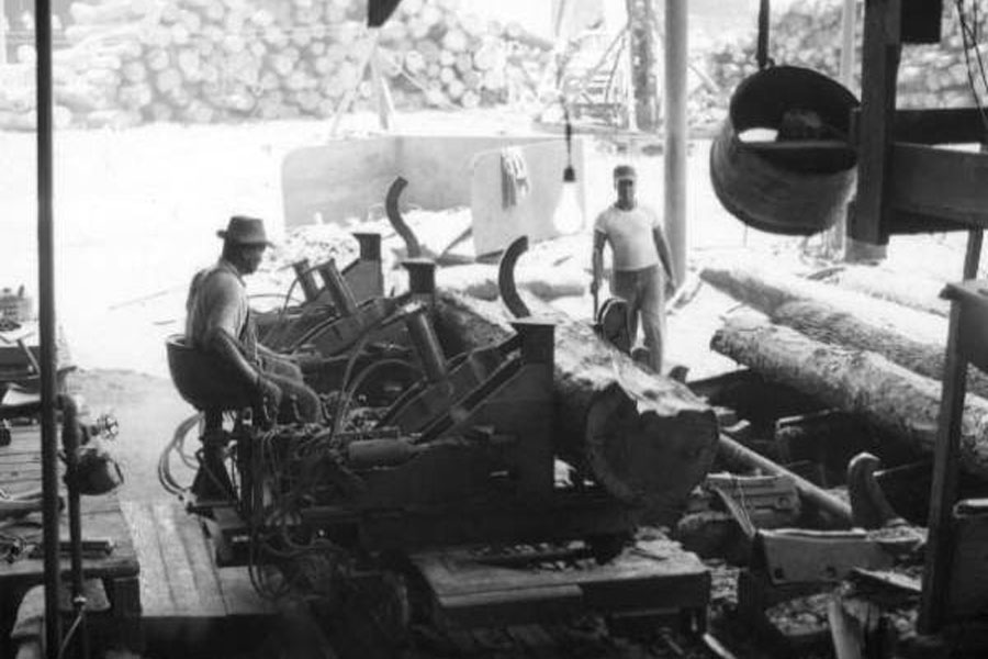 Rex Lumber Company, established in 1926 in Graceville, Florida. Men working at the Rex Lumber Company mill in Graceville during June 1960. Department of Commerce collection.  State Archives of Florida, Florida Memory.