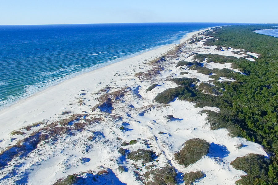 Aerial view of Cape San Blas just east of Mexico Beach, Florida. Photo credit ShutterStock.com, licensed.
