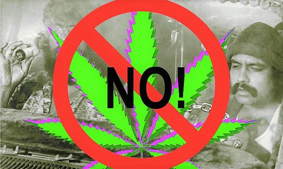 A Warning of the Real Danger of Marijuana