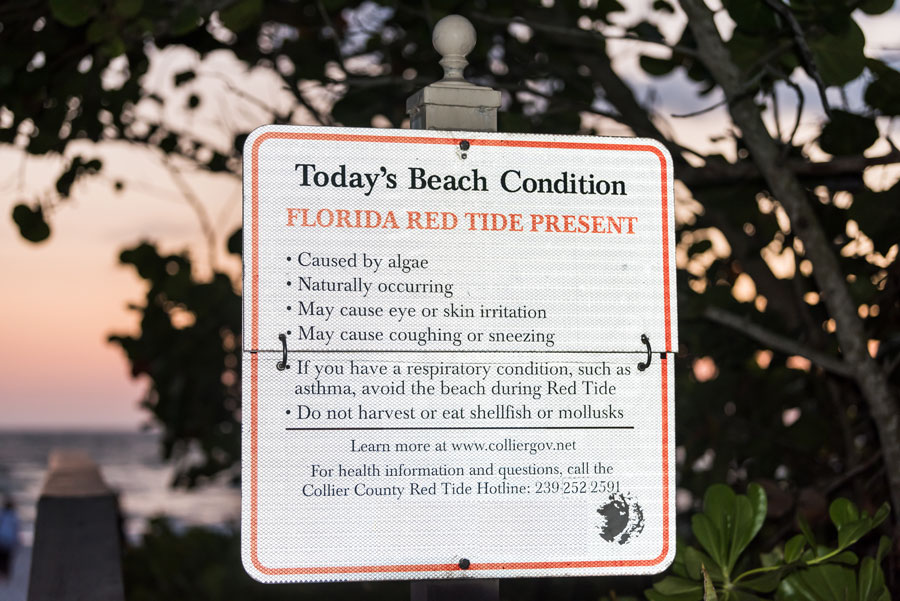 The Florida Dept. of Environmental Protection is partnering with Tampa Bay area governments and the Tampa Bay Estuary Program to monitor water quality at locations affected by the Piney Point breach.
