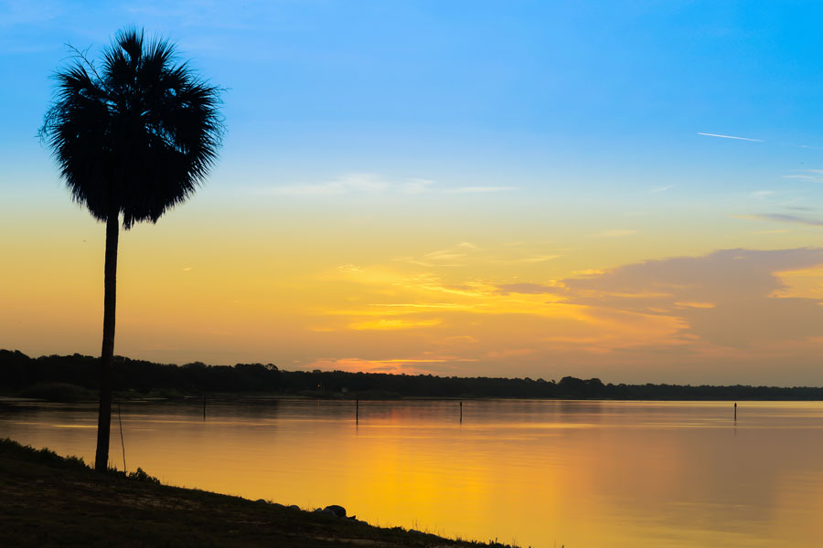 A beautiful sunrise over the Choctawhatchee Bay in Florida with a palm tree silhouette in the foreground. Eglin Air Force Base, Florida. Photo credit ShutterStock.com, licensed.