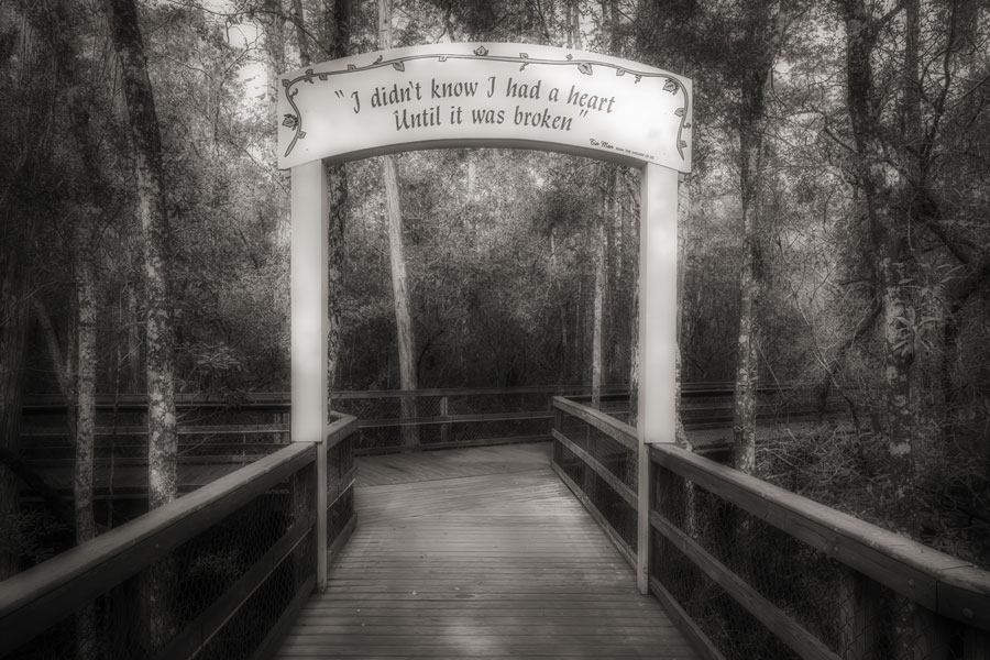 Turkey Creek, Niceville, Florida, on August 20, 2020. Along the boardwalk you'll find this sign with the quote from the Tin Man of the wizard of oz. I didn't know I had a heart until it was broken File photo: Terry Kelly, Shutterstock.com, licensed.