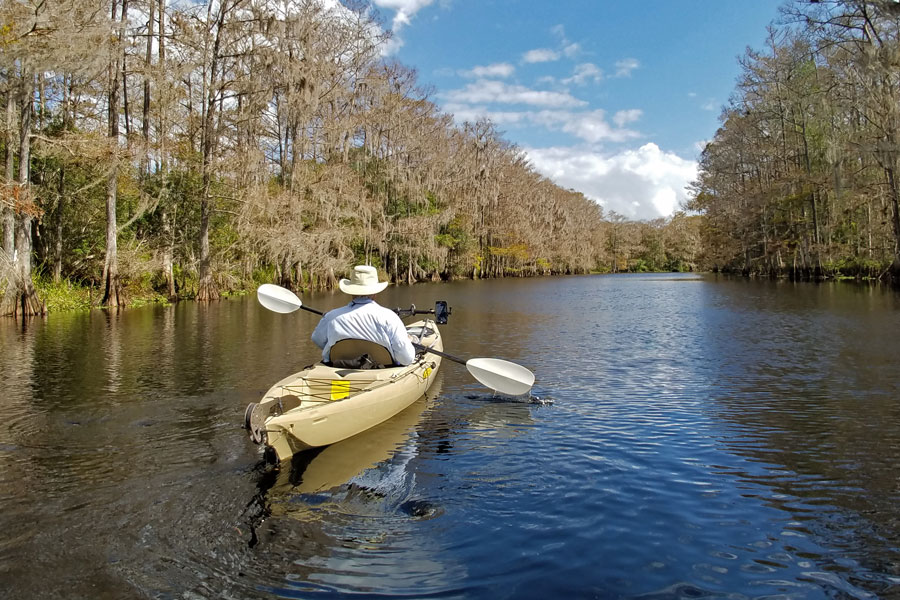 An active senior kayaking on the still waters of Fisheating Creek, a stream that flows into Lake Okeechobee in Florida, in late autumn.