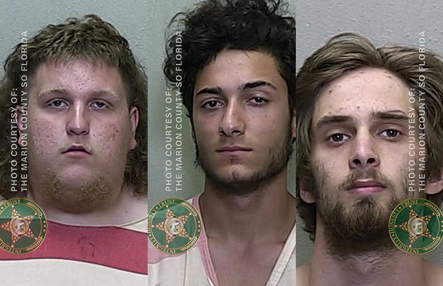 From left to right, Jared Bacelo, 18, Shelton Zoleo,18, and 20-year-old Zachary Amedeo, were all charged with Battery, Burglary, and Petit Theft.
