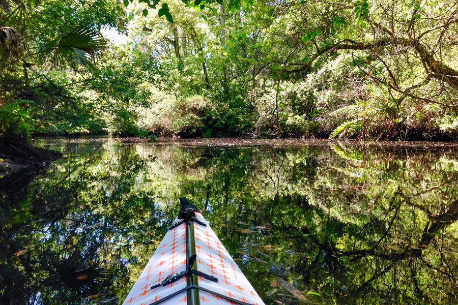 A kayaker enjoys the peace of the Pithlachascotee River at James E. Grey Preserve north of Tampa. Manatees and otters are common visitors to the park.